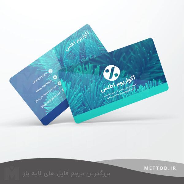 کارت ویزیت شخصی طرح 196