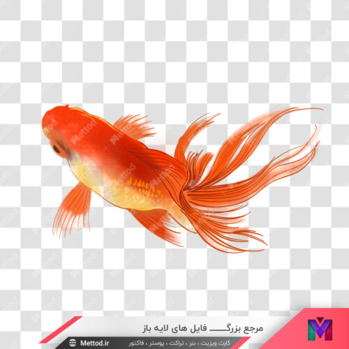 عکس png ماهی قرمز طرح 213