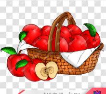 عکس png سیب طرح 376