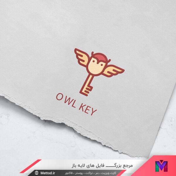 لوگو کلید و پرنده